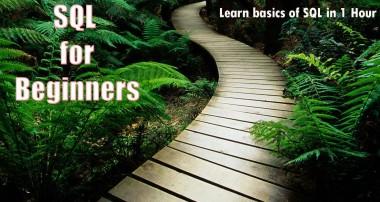 SQL for Beginners. Learn basics  of SQL in 1 Hour