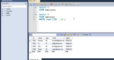 SQL Tutorial – 23: The LIKE Operator and Wildcard Characters