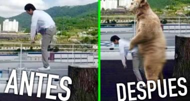 LOS DIOSES DEL TROLLEO EN PHOTOSHOP !!
