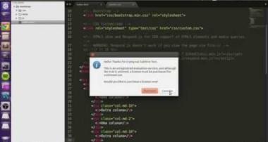 Aula 2: CSS Avançado / Bootstrap [Live Code Academy]