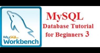 Beginners MYSQL Database Tutorial 3 #  MySQL INSERT Statement Query