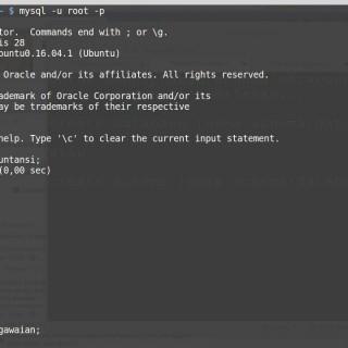 MySQL Database Tutorial #3: Menciptakan dan memusnahkan database