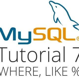 MySQL tutorial 7 – Like and Wildcards