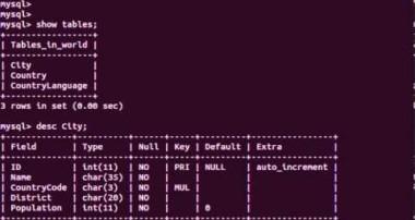 6 MySQL Video Tutorial Importing Backup