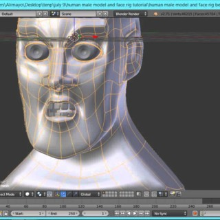 Human Male Face Modeling and Face rigging Part 1 Tutorial in Blender 2.71