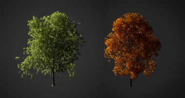 How to Create a Realistic Tree in Blender 3D – Part 1