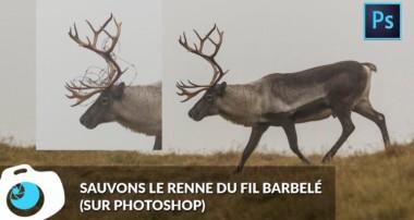 Photoshop – Outil Correcteur – Tampon de duplication – F/1.4 S06E25