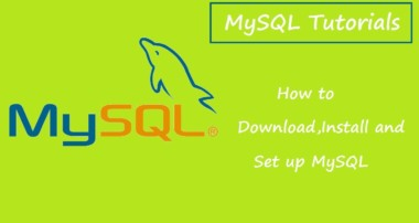 MySQL Tutorials for Beginners – 1 – Downloading and Installing MySQL
