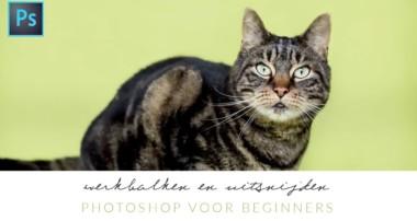 Photoshop voor beginners #1 – Werkbalken, uitsnijden en afbeeldingsgrootte