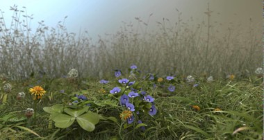 Blender guru grass-essentials animation test