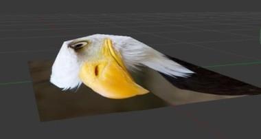 how make a 2D image into 3D form (eagle) : blender 3d v2.76 : spoken tutorial