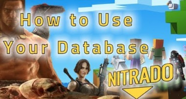 Support Tutorials: 4. How to use your database with Nitrado