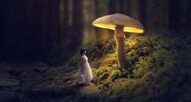 Glowing Mushroom – Photoshop Fantasy Manipulation Tutorial