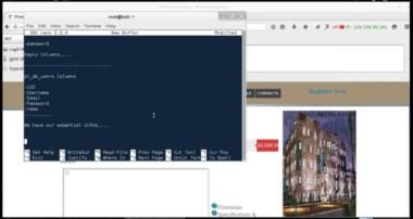 [Live] MySQL injection + WAF Bypass Mod Security (Live Hacking)
