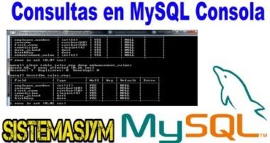 Tutorial N°10:Curso MySQL, Java con patrón MVC (Full Consultas en MYSQL Consola 4)