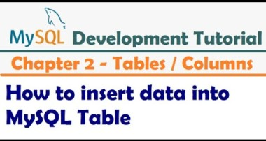 How to insert data into MySQL Table  |  Inserting Data Into Tables –  MySQL Developer Tutorial