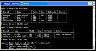 tutorial mysql: importacion de datos en mysql para Ms Windows