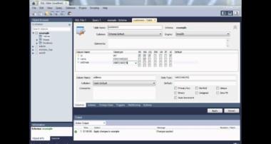 Delphi programming tutorial MySQL Database creation example