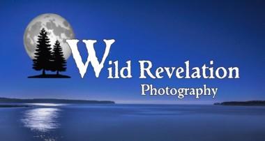 Wild Revelation Photography
