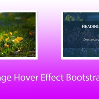 Image Hover Effect Using Bootstrap 4 and CSS3 with code 2018