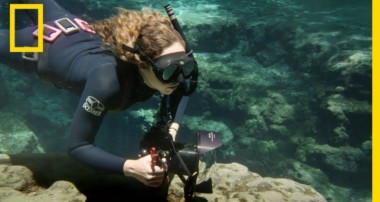 Anyone Can Be an Underwater Photographer | National Geographic