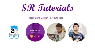 Team Card Hover Effect | Demo 13 | Html, Css & Bootstrap | SR Tutorials |