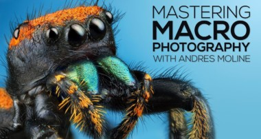 Mastering Macro Photography: The Complete Shooting and Editing Tutorial